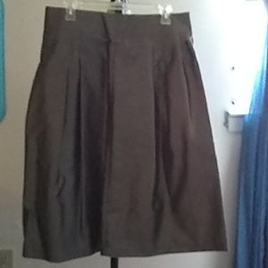 Skirt, Taffeta, Silver Color
